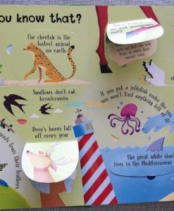 Lift A Flap Book Amazing & Curious Facts about Animals (2)