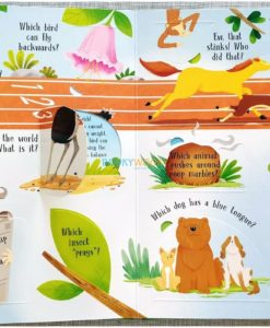 Lift A Flap Book Amazing & Curious Facts about Animals (3)