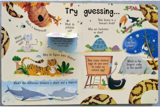 Lift A Flap Book Amazing & Curious Facts about Animals (4)