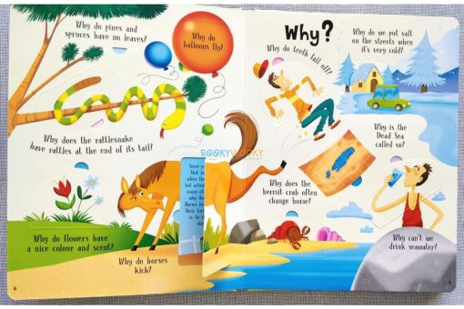 Lift A Flap Book Amazing & Curious Facts about the World (4)