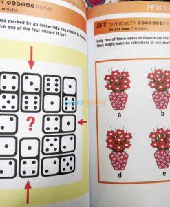 Mindworks Brain Training Perceptual Puzzles (4)