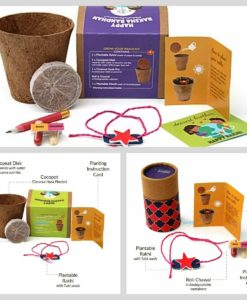 Plantable Rakhi with Seeds for kids - 3 options