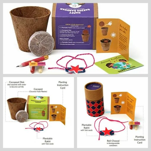 Plantable Rakhi with Seeds for kids - 3 options