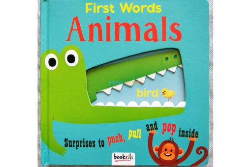 Push Pull and Pop Boardbooks (2 titles) - First Words Animals (1)