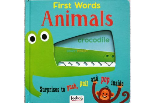 Push Pull and Pop Boardbooks (2 titles) - First Words Animals (2)