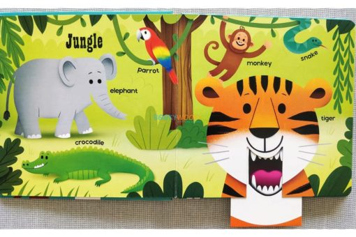 Push Pull and Pop Boardbooks (2 titles) - First Words Animals (5)