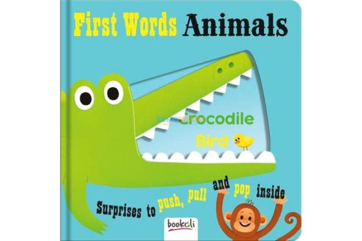Push Pull and Pop Boardbooks (2 titles) - First Words Animals 9781787721074 cover page
