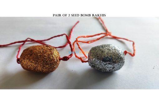 Seed Bomb Rakhis (Pair of 2)