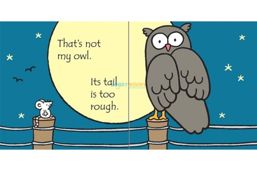 That's Not My Owl 3