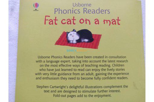 Fat Cat on a Mat- Usborne Phonics Readers (7)