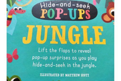 Hide and Seek Pop Ups Jungle 5