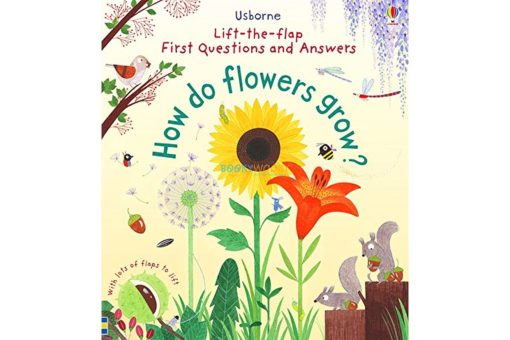 Lift the Flap First Questions and Answers- How Do Flowers Grow cover
