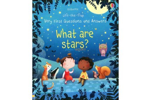 Lift the flap Very First Questions and Answers- What Are Stars cover