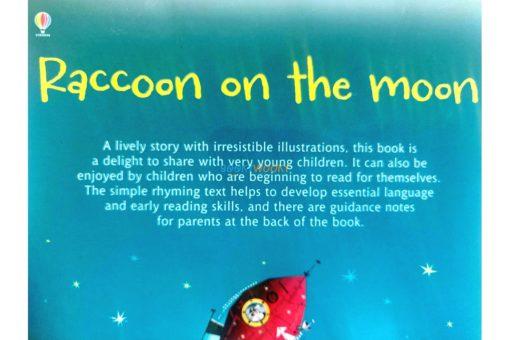 Raccoon on the Moon- Usborne Phonics Readers (3)