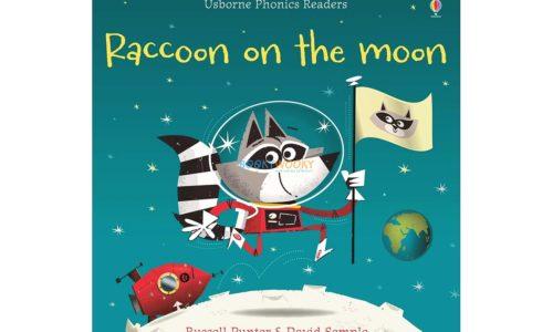 Raccoon on the Moon- Usborne Phonics Readers 9781409580409 cover