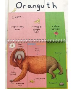 Wild Animals - A Mix and Match Book (3)