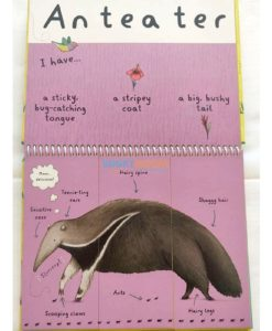 Wild Animals - A Mix and Match Book (4)