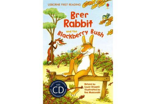 Brer Rabbit and the Blackberry Bush 9781409504412 cover
