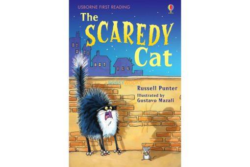 The Scaredy Cat 9781409500209 (1)
