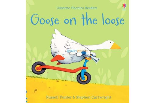 Goose-on-the-Loose-Usborne-Phonics-Readers-9781474970181.jpg