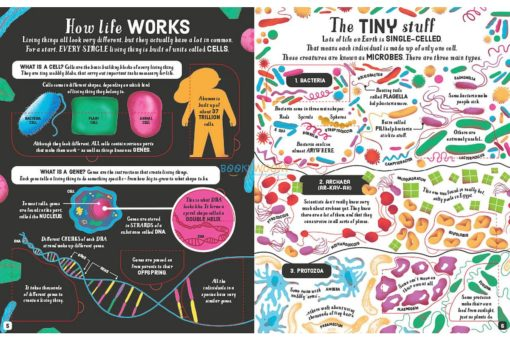 Lift-the-Flap-Biology-9781474969154-inside2.jpg