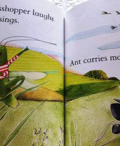 The-Ant-and-the-Grasshopper-Usborne-First-Reading-Level-1-9781409500766-inside-2.jpg
