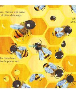 Peep Inside a Beehive 9781474978477