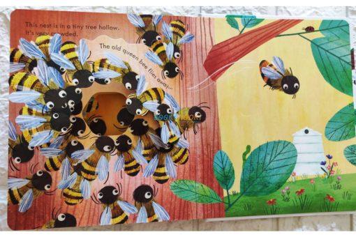 Peep Inside a Beehive 9781474978477 (4)