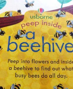 Peep Inside a Beehive 9781474978477 (5)