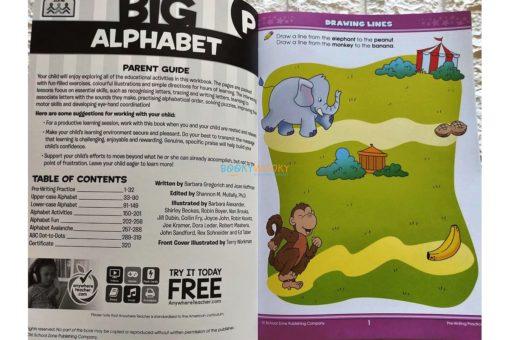 School Zone Big Alphabet (3)