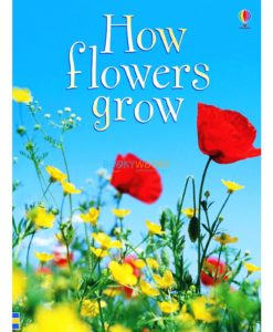 How-Flowers-Grow-Usborne-Beginners-9780746074503.jpg