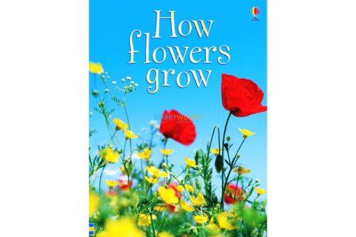 How-Flowers-Grow-Usborne-Beginners-9780746074503.jpg