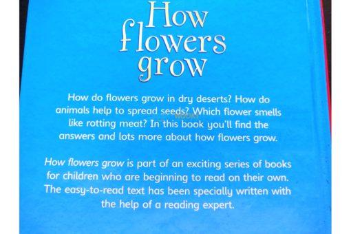 How-Flowers-Grow-Usborne-Beginners-9780746074503-inside-7.jpg