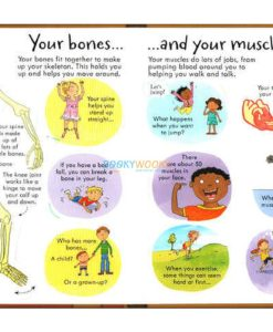 Look Inside your Body Usborne 100 flaps inside2