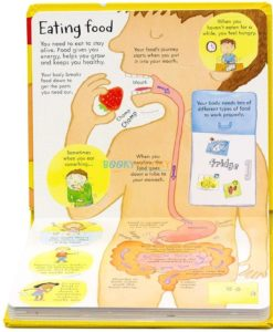 Look Inside your Body Usborne 100 flaps inside4
