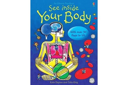 See Inside your body Usborne 50 flaps main