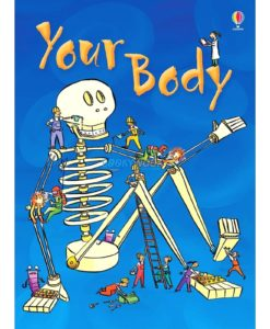 Your-Body-Usborne-Beginners-9780746074800.jpg