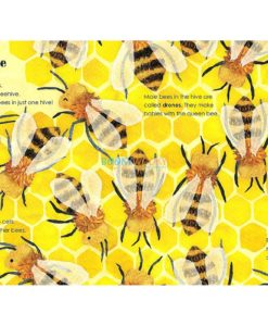 Bees A Lift-The-Flap Eco Book