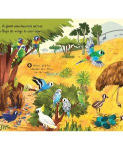 First Explorers Beautiful Birds