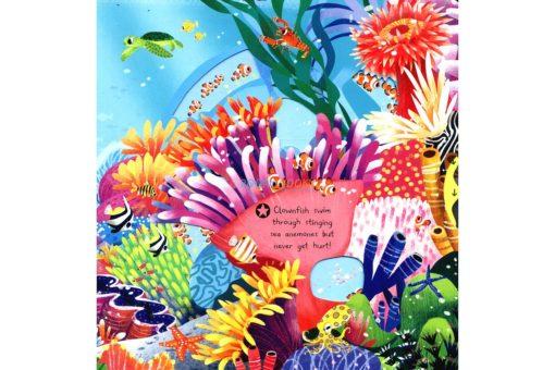 First Explorers Sea Creatures