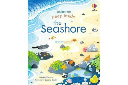 Peep Inside the Seashore