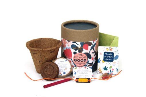 Eco-friendly Plantable Seed Rakhi Kit – Classic Kit