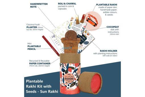 Rakhi with Plantable Seeds Planter Pot Sun Rakhi