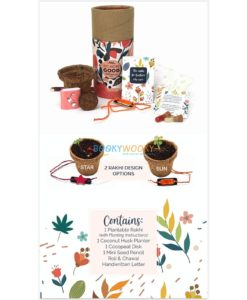 Rakhi with Plantable Seeds and Planter Pot contents