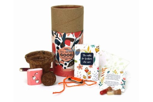 Rakhi with Plantable Seeds and Planter Pot for Adults